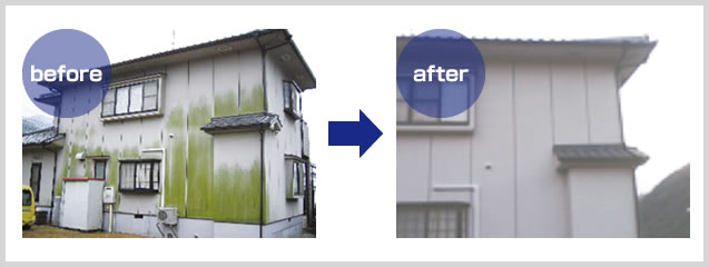 防汚カビ塗料の威力