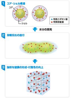 水性SDサーフEPOのメカニズム
